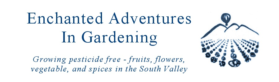 Enchanted Adventures In Gardening
